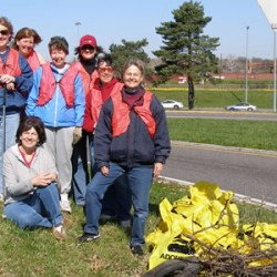 Green Team - I44 Clean-Up